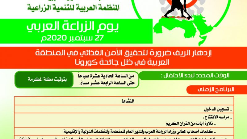 انواع الخطوط العربية