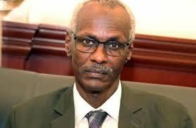 وزير الري السوداني: توفير مياه الشرب لكل المواطنين احد اهم التحديات امام الحكومة الانتقالية